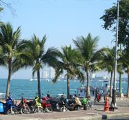 Prostitutes on Beach Road in Pattaya Thailand Price