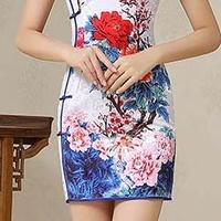 sexy Chinese dress