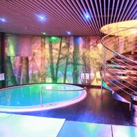 Sex saunas in Czechia