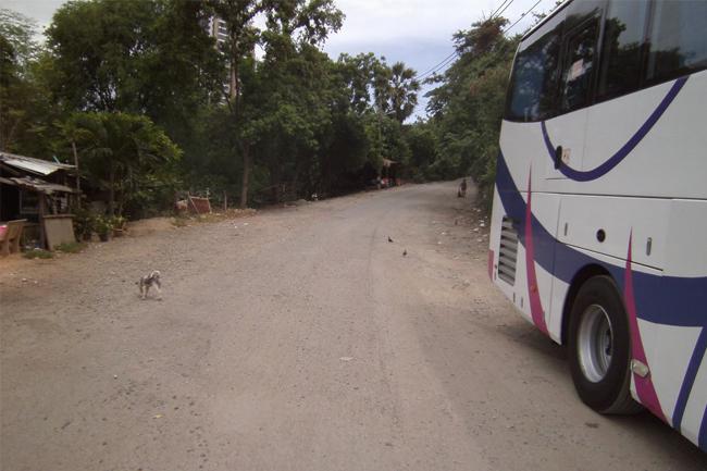Bush Mountain Pattaya