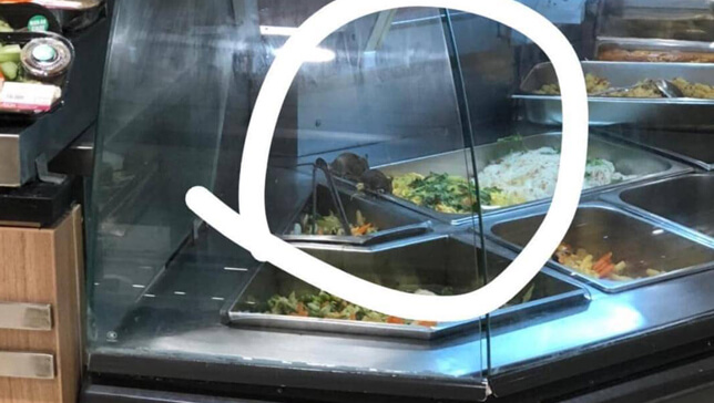 rat on food in vietnam mall